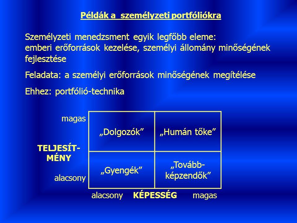 Példák a személyzeti portfóliókra