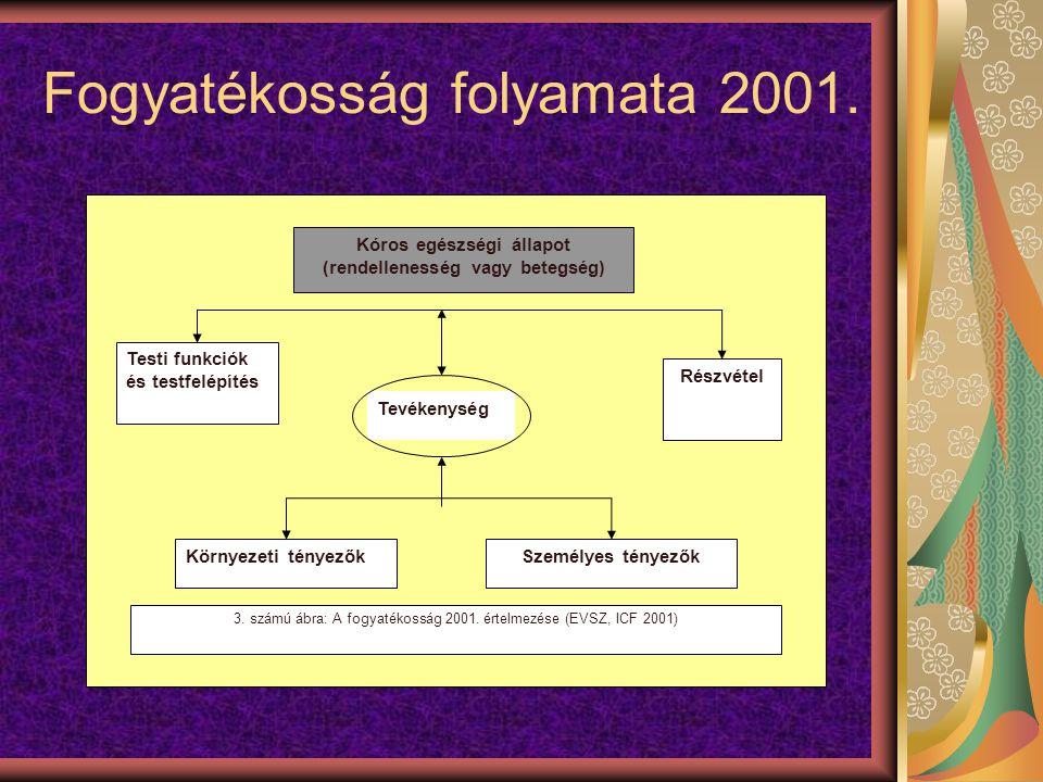 Fogyatékosság folyamata 2001.