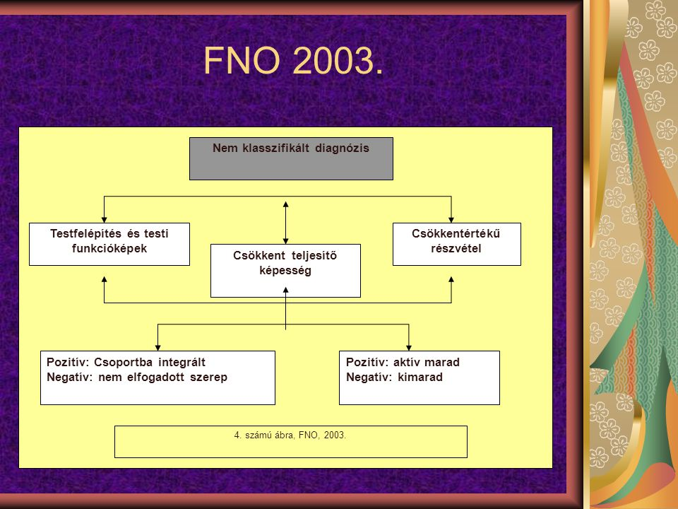 FNO 2003. Nem klasszifikált diagnózis