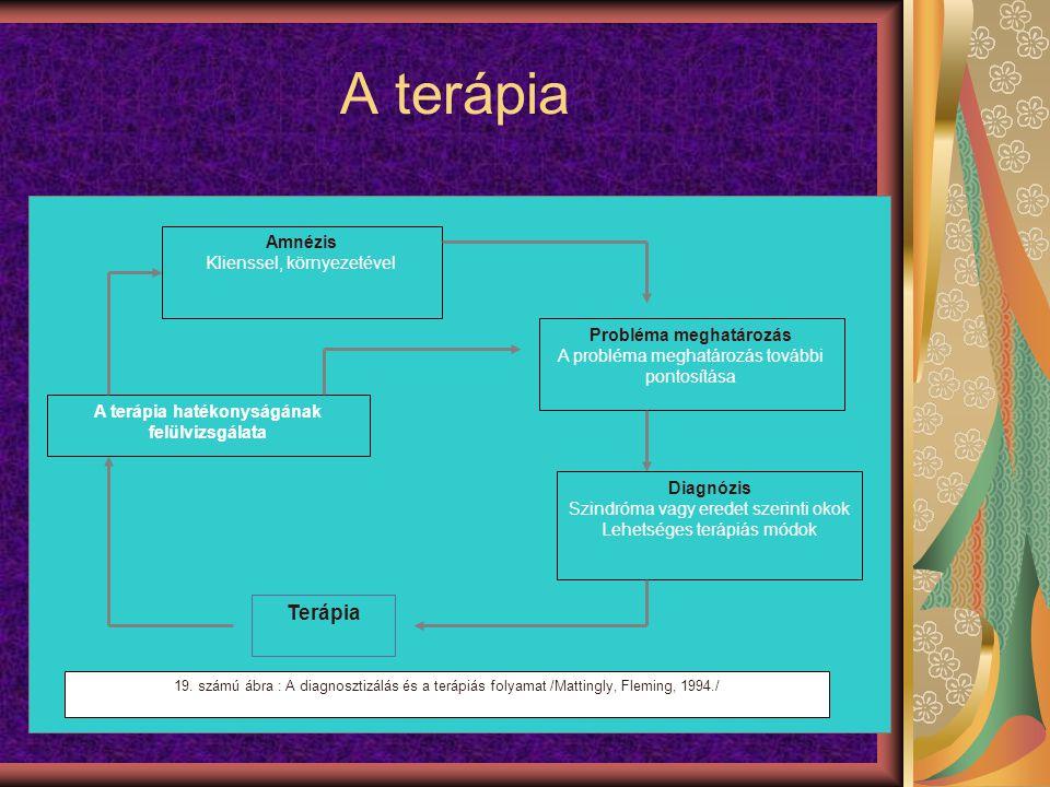 A terápia hatékonyságának felülvizsgálata Probléma meghatározás