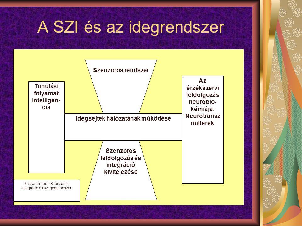 A SZI és az idegrendszer
