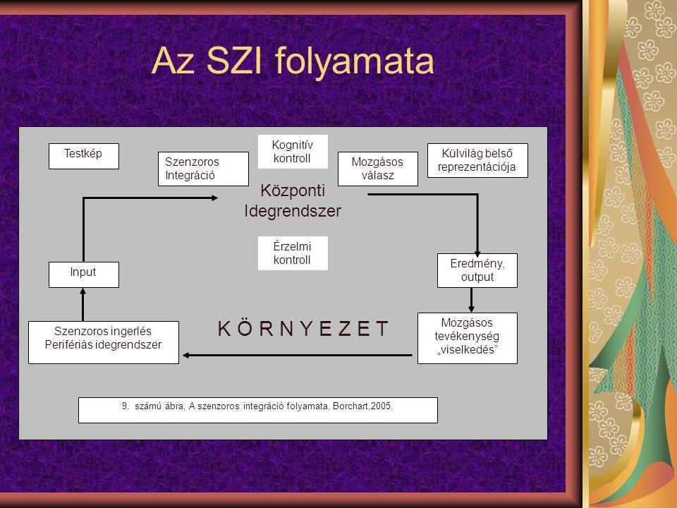 Az SZI folyamata K Ö R N Y E Z E T Központi Idegrendszer Testkép