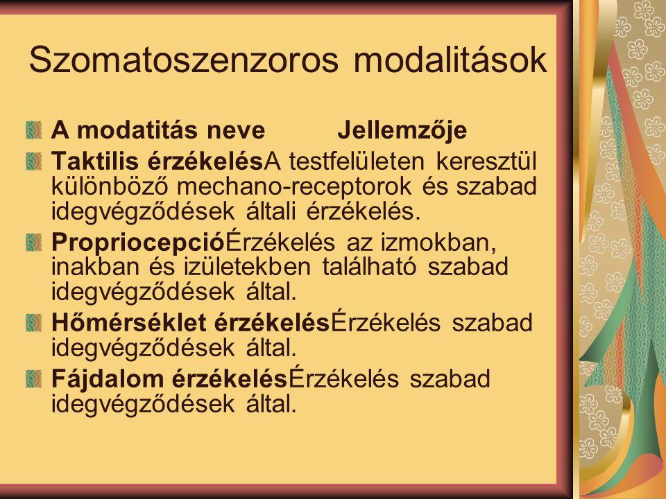 Szomatoszenzoros modalitások