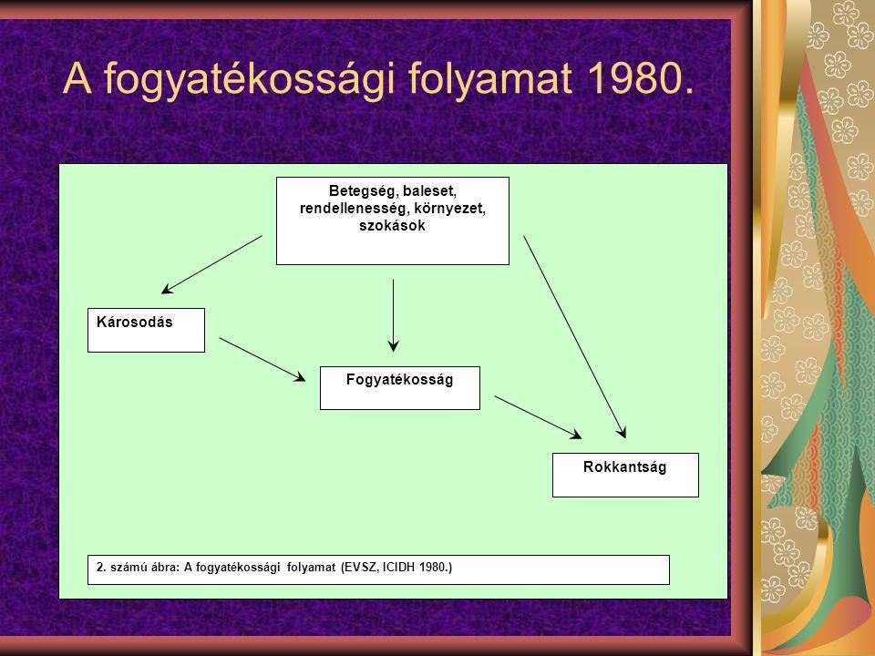 A fogyatékossági folyamat 1980.