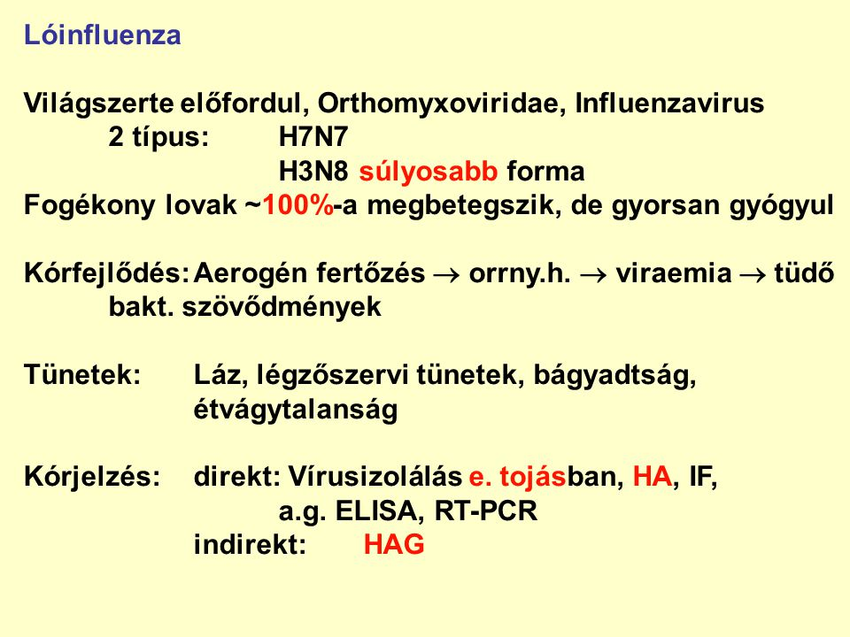 Lóinfluenza Világszerte előfordul, Orthomyxoviridae, Influenzavirus. 2 típus: H7N7. H3N8 súlyosabb forma.