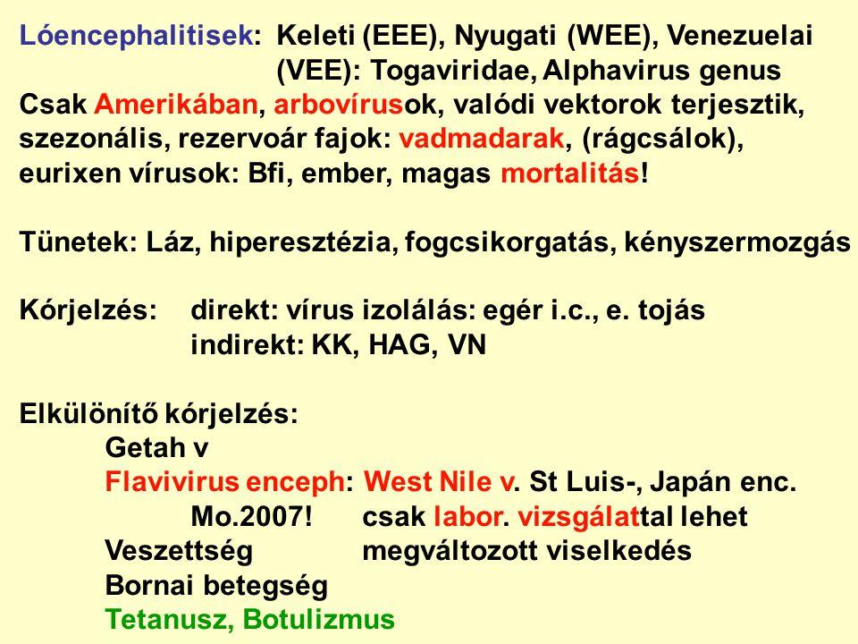 Lóencephalitisek: Keleti (EEE), Nyugati (WEE), Venezuelai