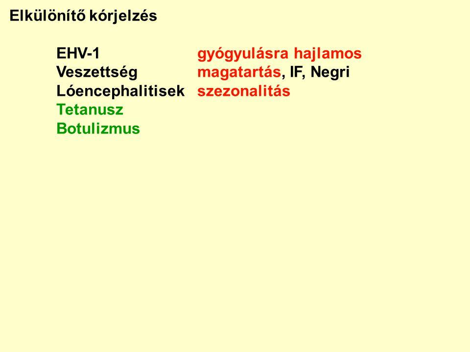 Elkülönítő kórjelzés EHV-1 gyógyulásra hajlamos. Veszettség magatartás, IF, Negri. Lóencephalitisek szezonalitás.