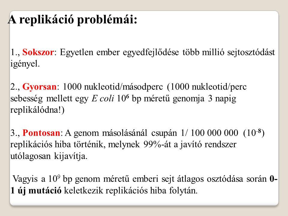 A replikáció problémái: