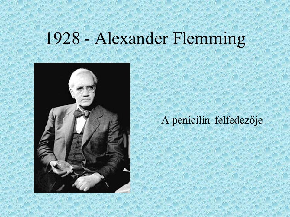 1928 - Alexander Flemming A penicilin felfedezője