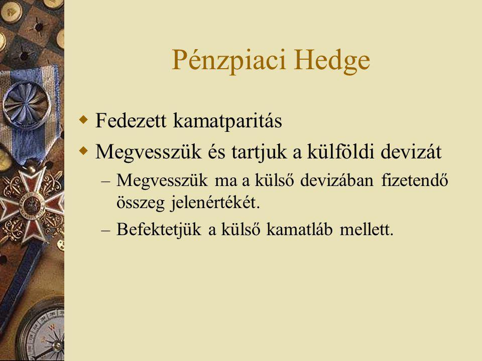 Pénzpiaci Hedge Fedezett kamatparitás