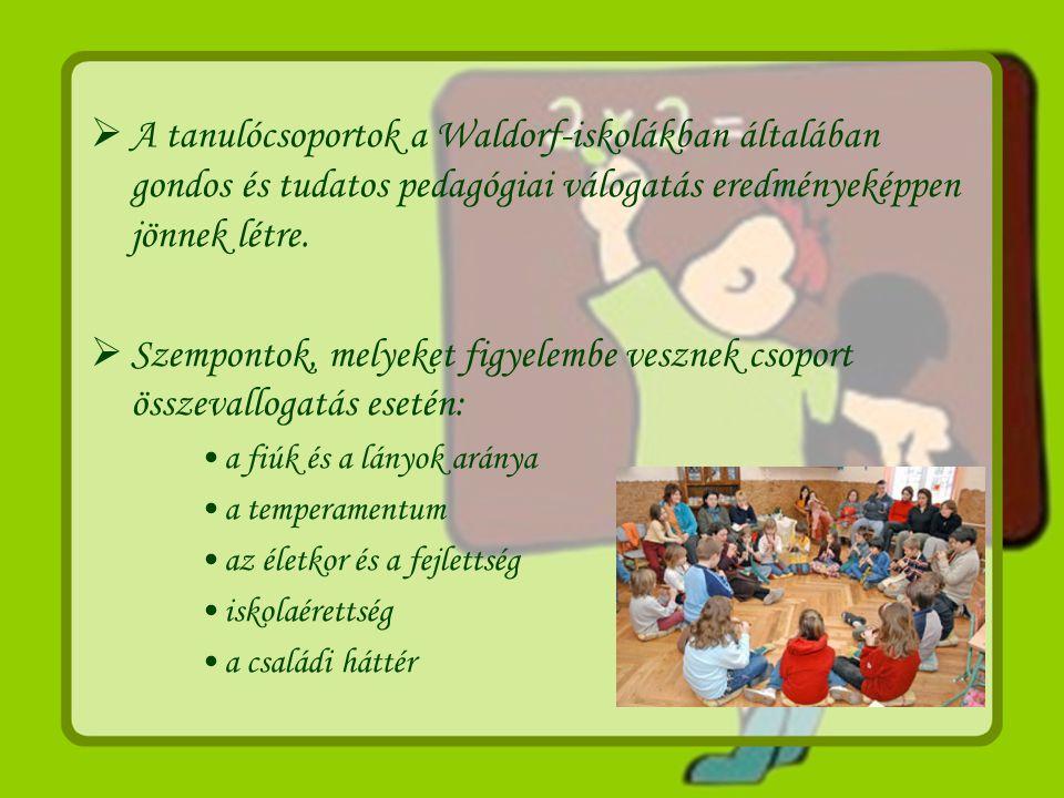 A tanulócsoportok a Waldorf-iskolákban általában gondos és tudatos pedagógiai válogatás eredményeképpen jönnek létre.