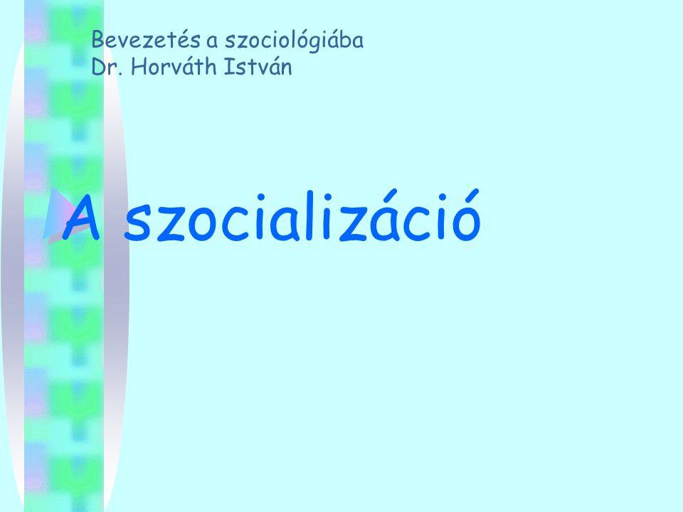 Bevezetés a szociológiába Dr. Horváth István
