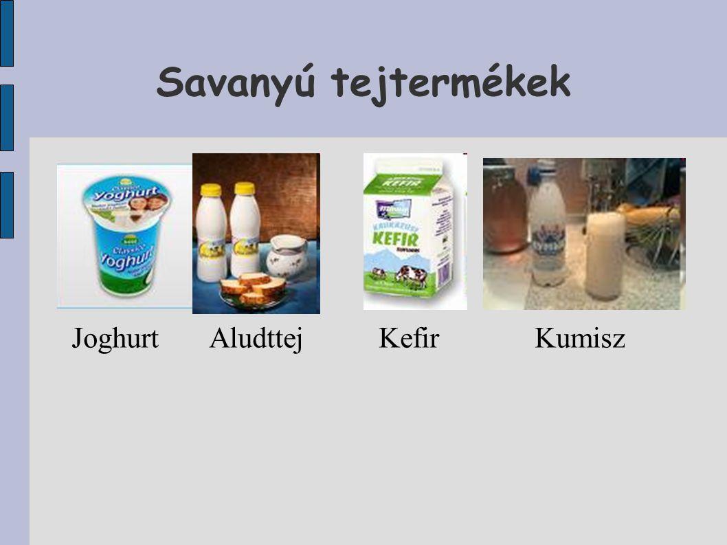 Savanyú tejtermékek Joghurt Aludttej Kefir Kumisz