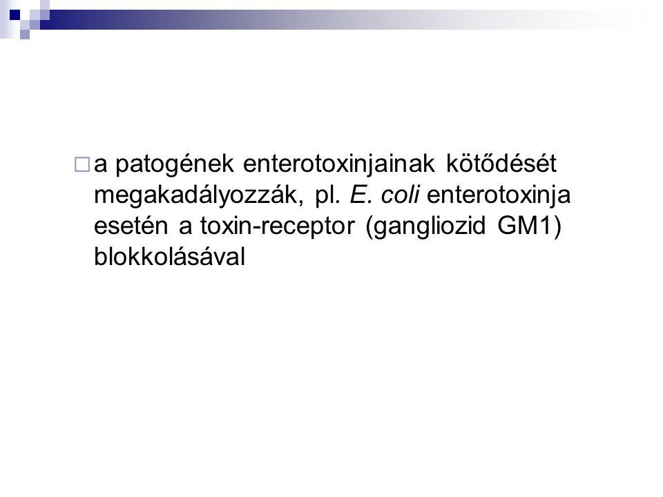 a patogének enterotoxinjainak kötődését megakadályozzák, pl. E