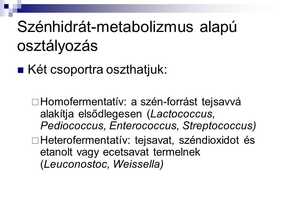 Szénhidrát-metabolizmus alapú osztályozás