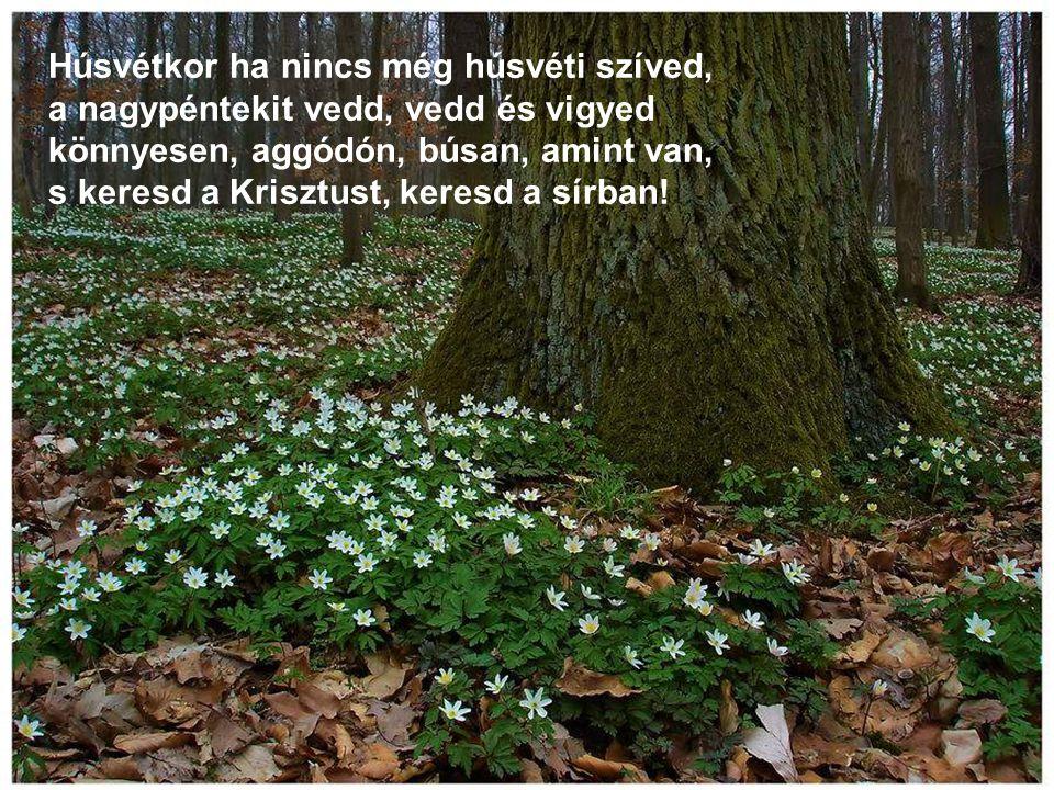 Húsvétkor ha nincs még húsvéti szíved, a nagypéntekit vedd, vedd és vigyed könnyesen, aggódón, búsan, amint van, s keresd a Krisztust, keresd a sírban!