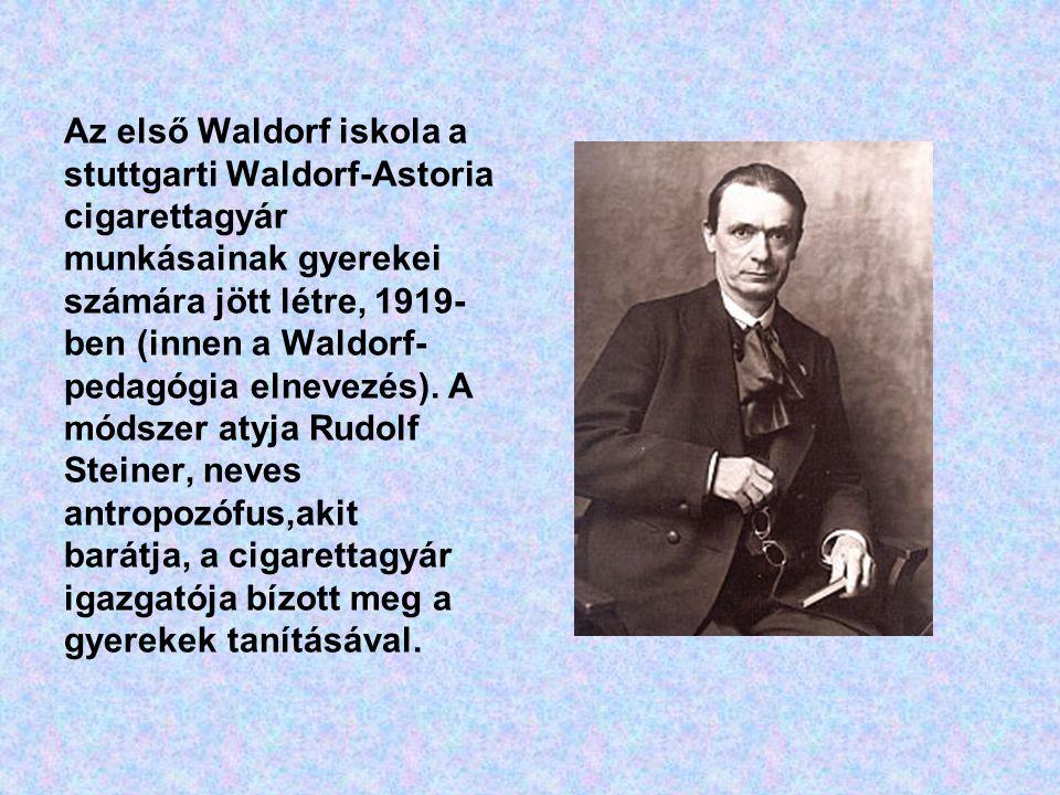 Az első Waldorf iskola a stuttgarti Waldorf-Astoria cigarettagyár munkásainak gyerekei számára jött létre, 1919-ben (innen a Waldorf-pedagógia elnevezés).