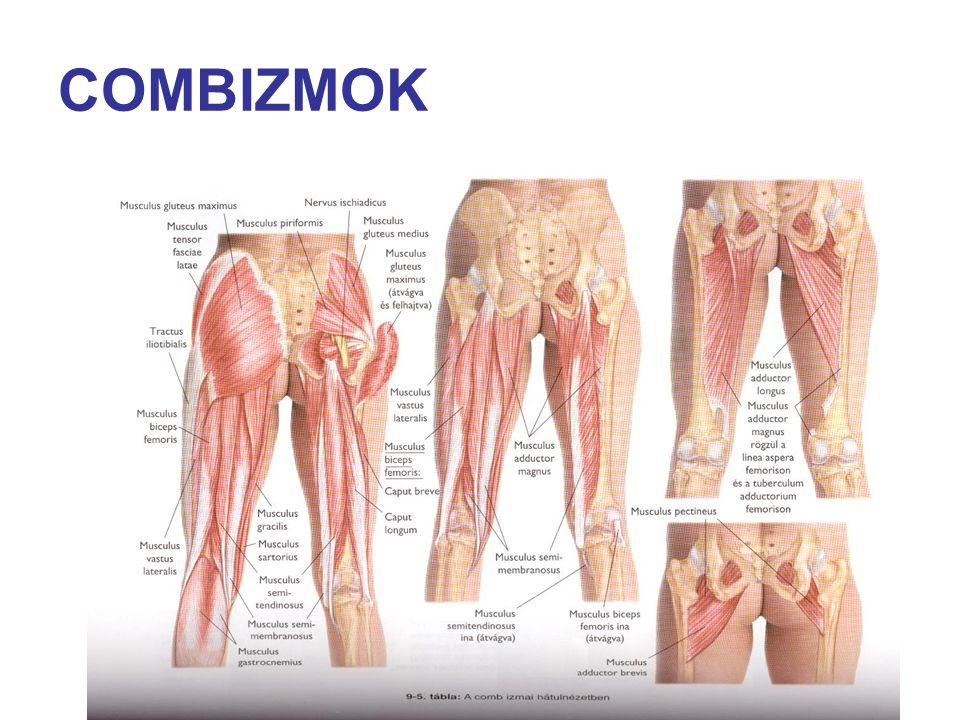 COMBIZMOK