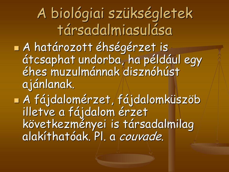 A biológiai szükségletek társadalmiasulása