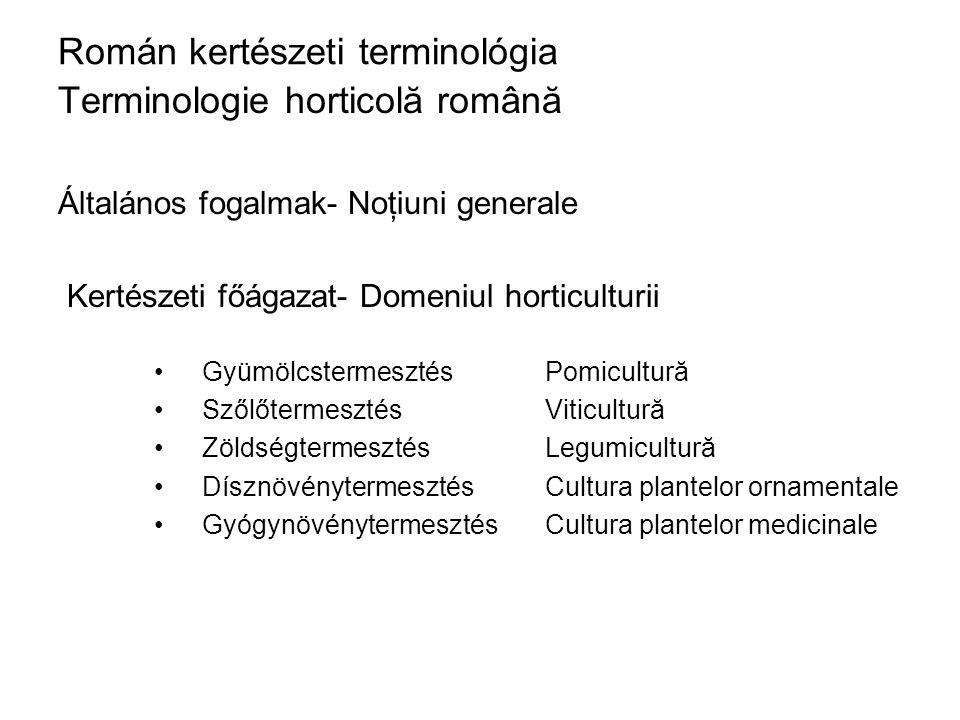 Román kertészeti terminológia