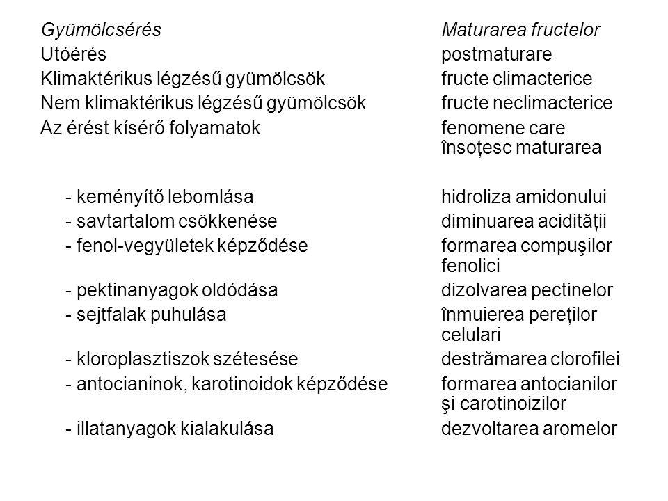 Gyümölcsérés Maturarea fructelor