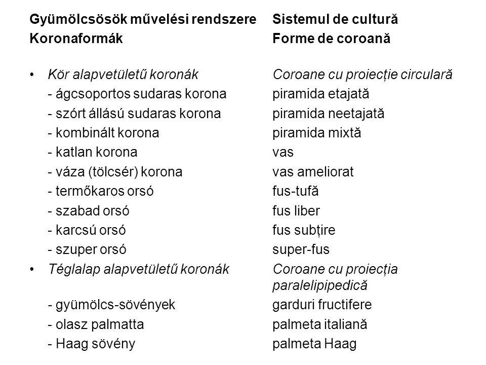 Gyümölcsösök művelési rendszere Sistemul de cultură