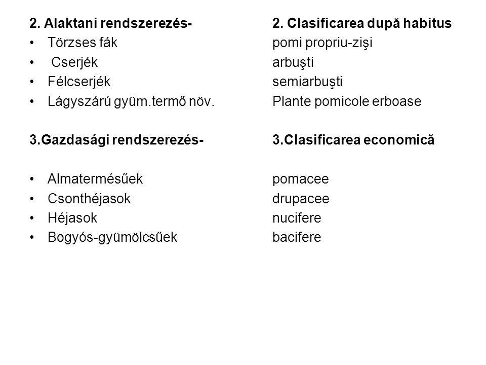 2. Alaktani rendszerezés- 2. Clasificarea după habitus