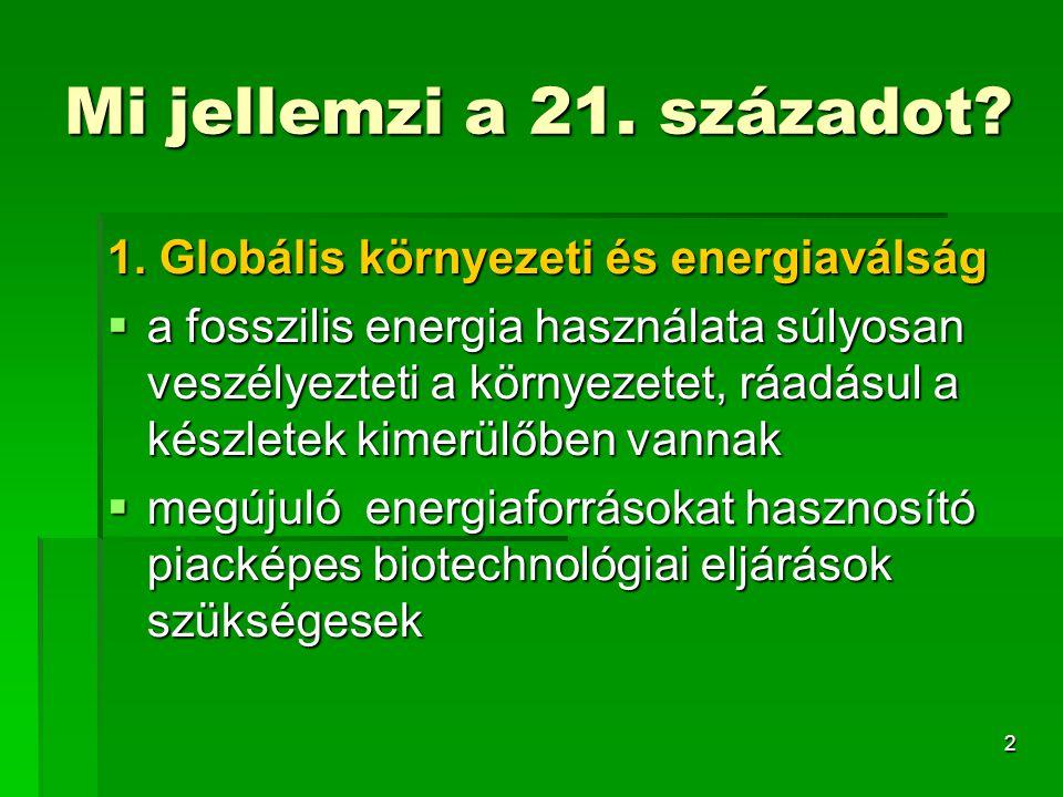 Mi jellemzi a 21. századot 1. Globális környezeti és energiaválság