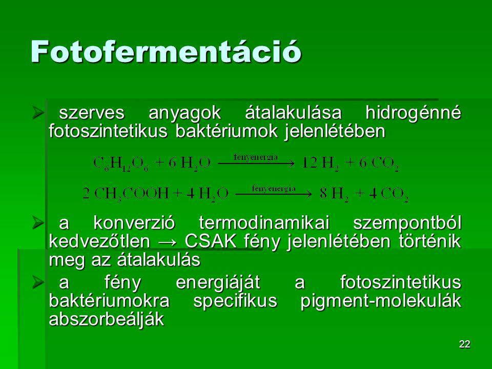 Fotofermentáció szerves anyagok átalakulása hidrogénné fotoszintetikus baktériumok jelenlétében.