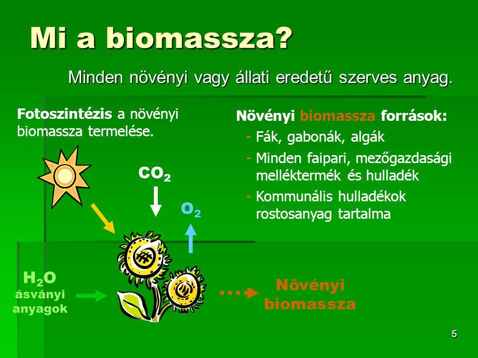 Mi a biomassza Minden növényi vagy állati eredetű szerves anyag. CO2