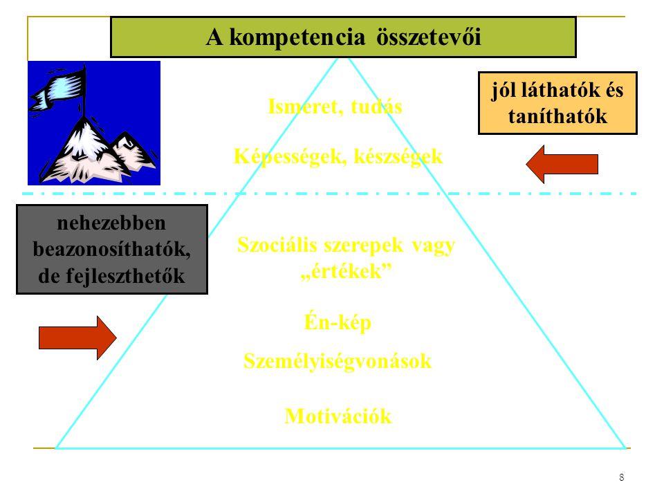 A kompetencia összetevői