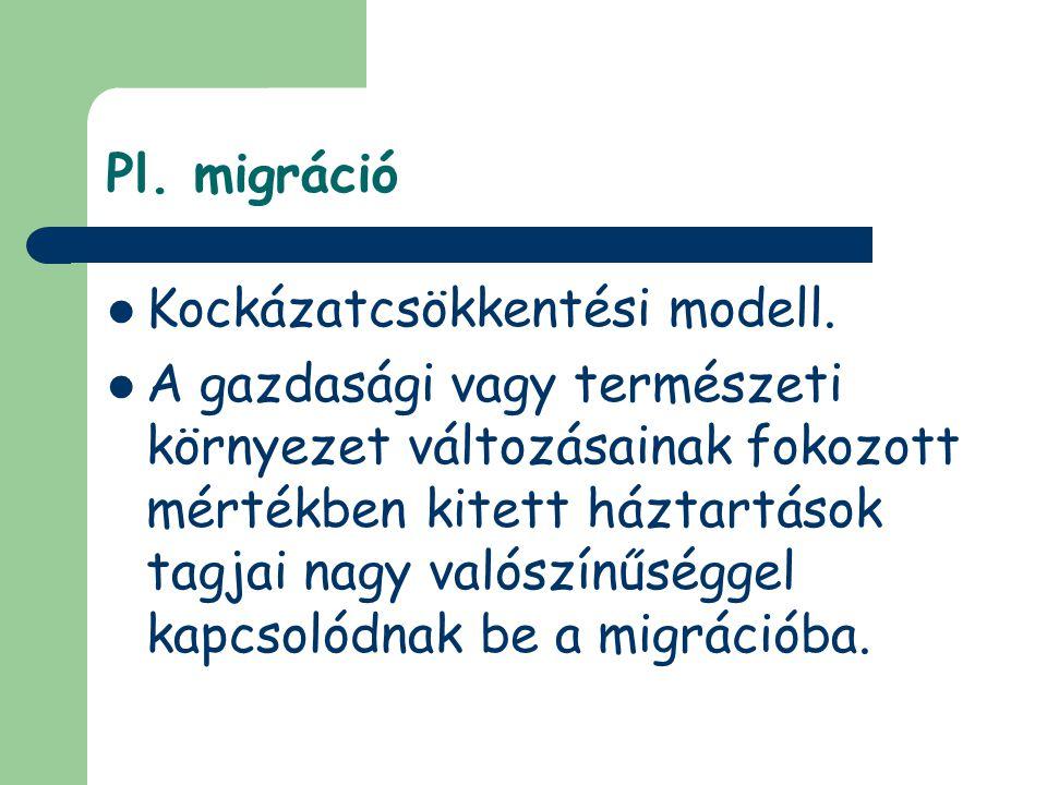 Pl. migráció Kockázatcsökkentési modell.