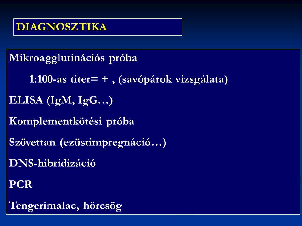 DIAGNOSZTIKA Mikroagglutinációs próba. 1:100-as titer= + , (savópárok vizsgálata) ELISA (IgM, IgG…)