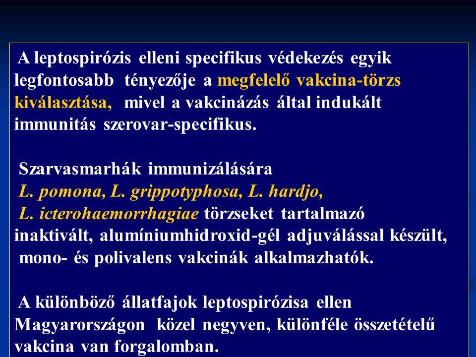 Szarvasmarhák immunizálására L. pomona, L. grippotyphosa, L. hardjo,