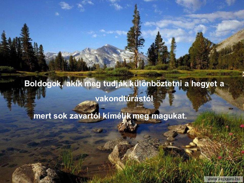 Boldogok, akik meg tudják különböztetni a hegyet a vakondtúrástól