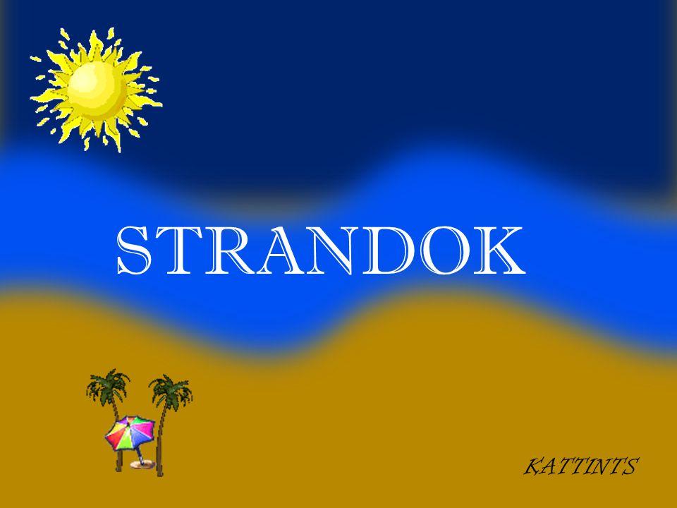 STRANDOK KATTINTS 1