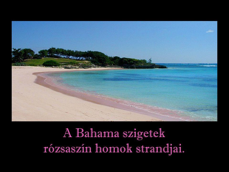rózsaszín homok strandjai.