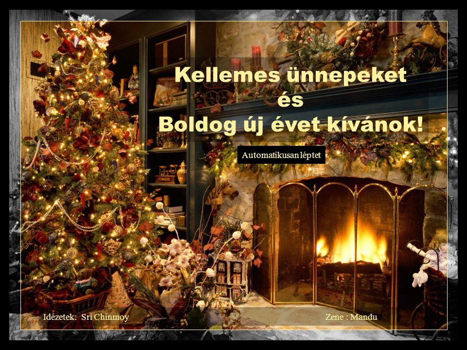 Kellemes ünnepeket és Boldog új évet kívánok!