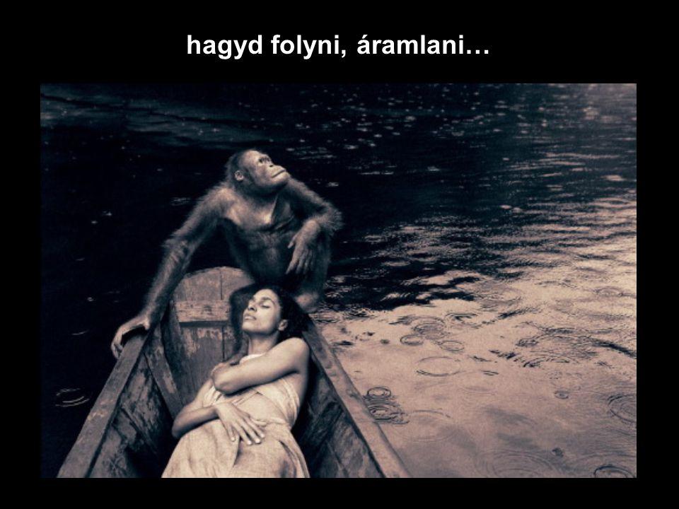 hagyd folyni, áramlani…