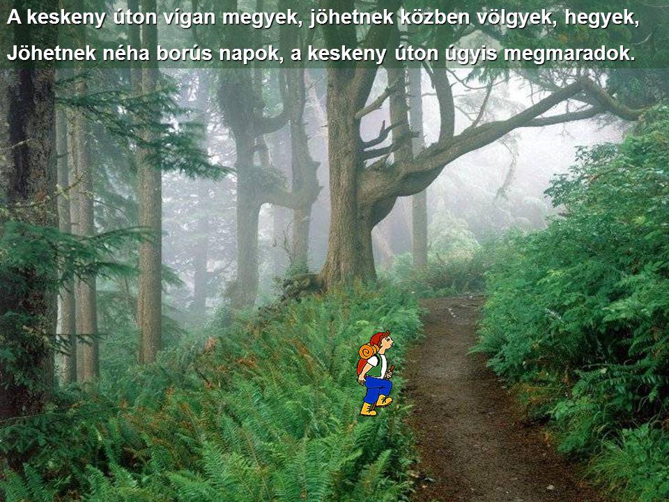 A keskeny úton vígan megyek, jöhetnek közben völgyek, hegyek,