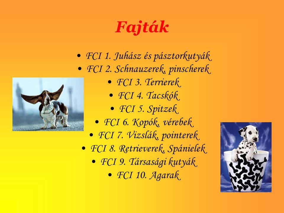 Fajták FCI 1. Juhász és pásztorkutyák FCI 2. Schnauzerek, pinscherek