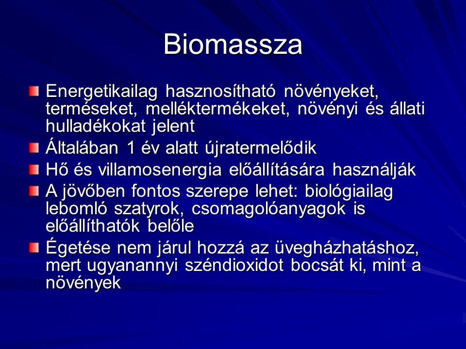 Biomassza Energetikailag hasznosítható növényeket, terméseket, melléktermékeket, növényi és állati hulladékokat jelent.
