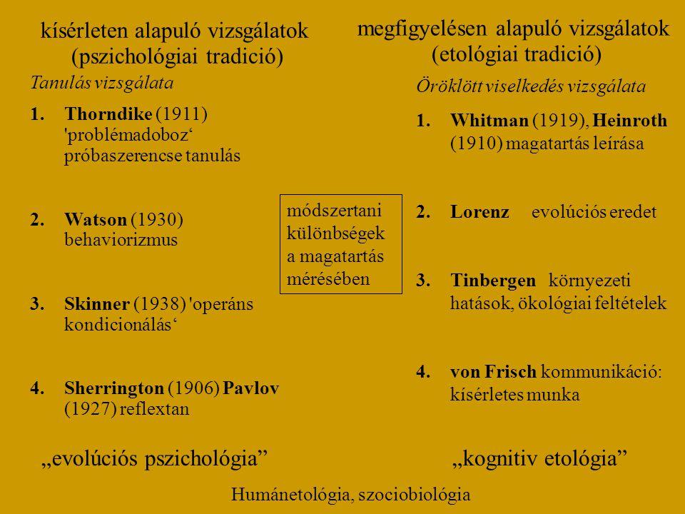 megfigyelésen alapuló vizsgálatok (etológiai tradició)