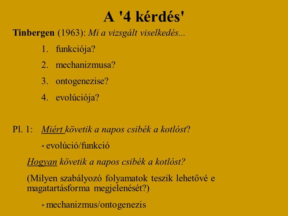 A 4 kérdés Tinbergen (1963): Mi a vizsgált viselkedés... funkciója