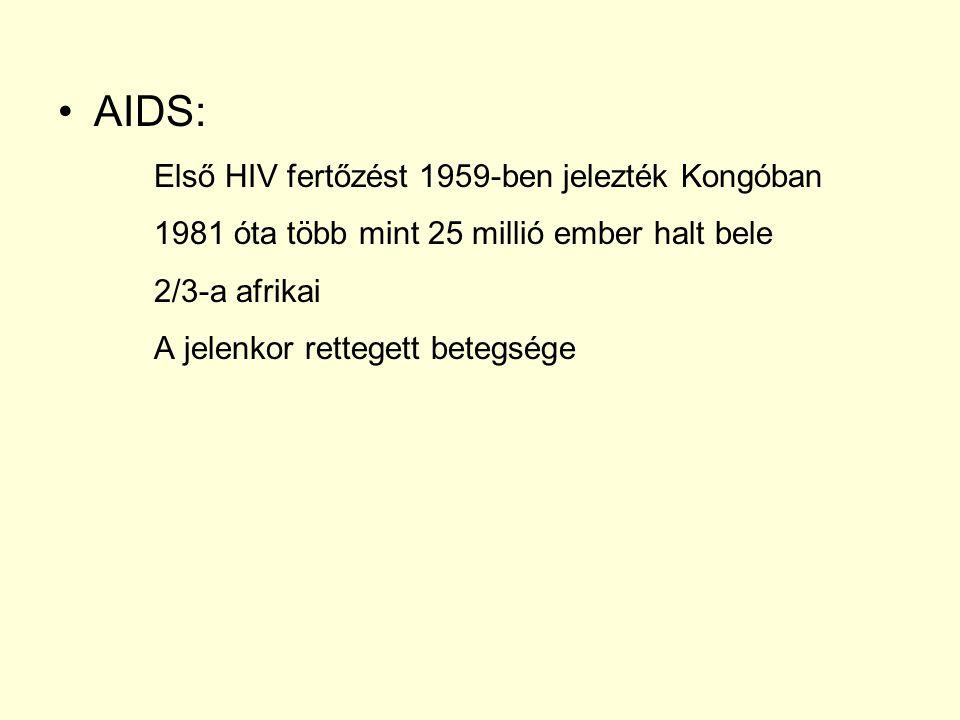 AIDS: Első HIV fertőzést 1959-ben jelezték Kongóban