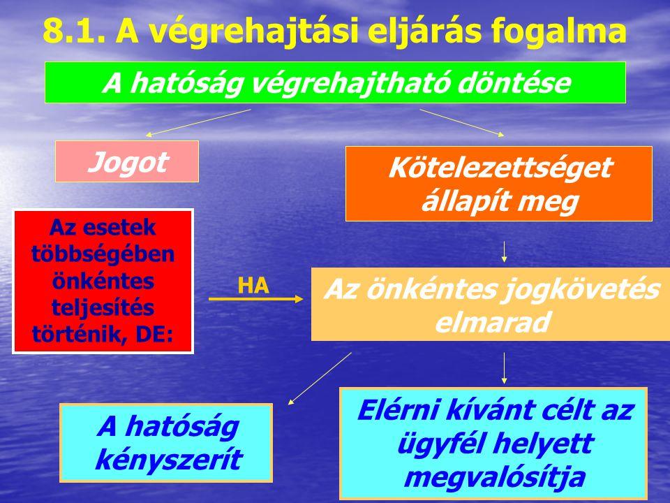 8.1. A végrehajtási eljárás fogalma