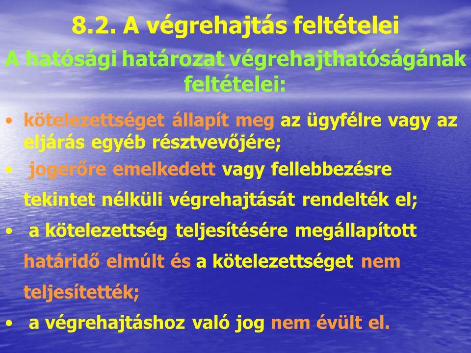 8.2. A végrehajtás feltételei