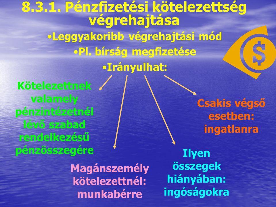 8.3.1. Pénzfizetési kötelezettség végrehajtása