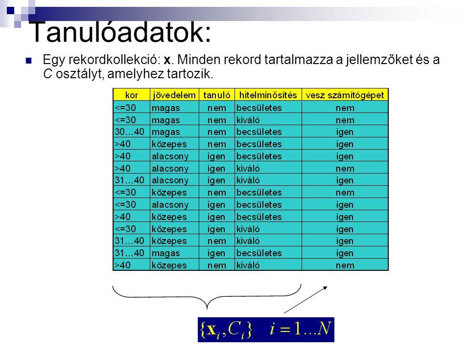 Tanulóadatok: Egy rekordkollekció: x. Minden rekord tartalmazza a jellemzőket és a C osztályt, amelyhez tartozik.