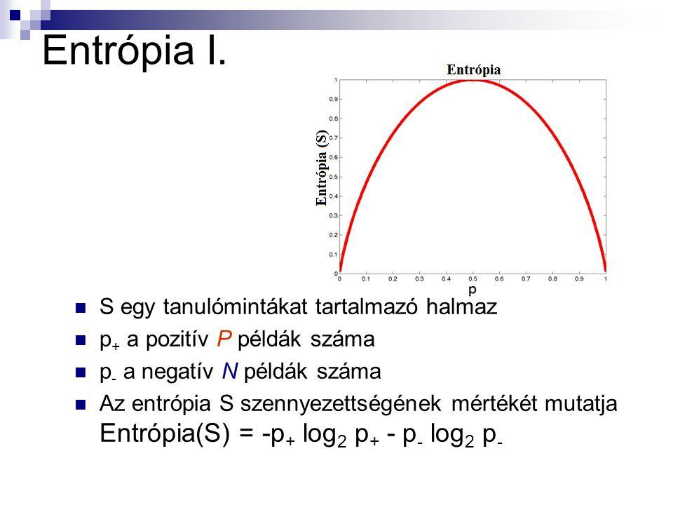 Entrópia I. S egy tanulómintákat tartalmazó halmaz